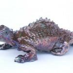 Copper Lizard