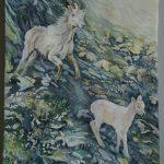 Ivvavik, NT Dall sheep - watercolour
