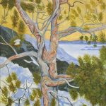 Twisted Jack pine, NT - acrylic