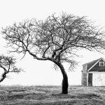 Three Solitudes
