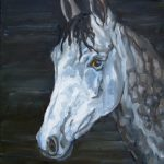 The young gelding. Oil on canvas. 14X14""