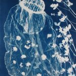 """The Feral Bride, cyanotype on paper, 27""""x36"""", 2018"""